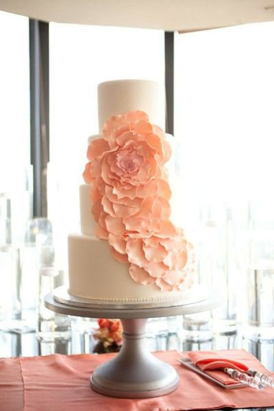 modern floral cake by http://www.weddingcakesbyjill.com/ Photography by elizabethscottphotography.com