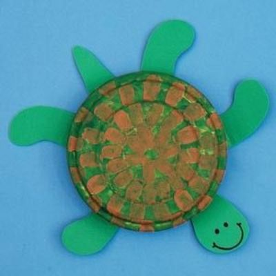 essay on turtle for kids