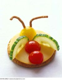 Cheese and cracker bug