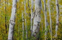 Jamie MacLean birch forest painting...