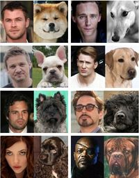 The Avengers as dogs...