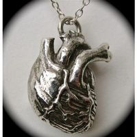 Sterling Silver Anatomical Heart Necklace by Blue Bayer Design NYC