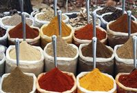 Seven Seasonings: The Key Spices of Indian Cuisine (yum!)