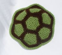 Turtle shell for an infant