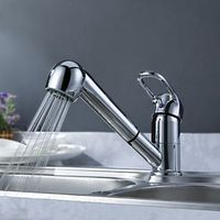 Solid Brass Pull Out Kitchen Faucet