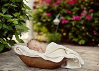 newborn baby in wooden bowl, wrapped in blanket