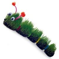 sprout a caterpillar directions