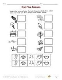 5 Senses cut + paste worksheet