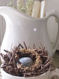Ironstone and a birds nest