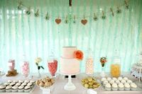 Wedding-Dessert-Table-Backdrop mint and peach wedding