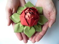 an origami lotus flower