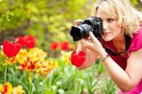 Websites for selling stock photos.