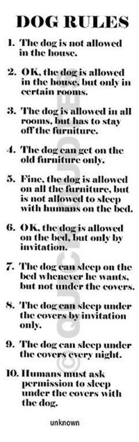 Dog Rules #dogs #animals #quotes #funny