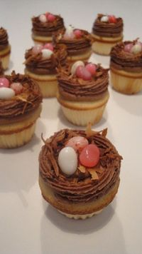 Mini easter cupcakes from New South Cupcakes
