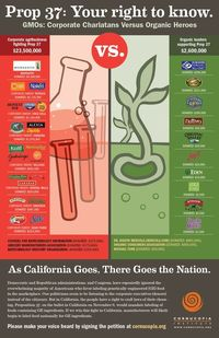 Infographic that names the natural and organic brands whose parent companies have provided funding to oppose Prop 37 (label GMOs) from The Cornucopia Institute
